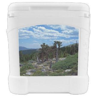 Bristlecone Pine Tree Rolling Cooler