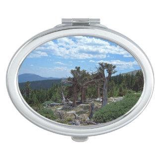 Bristlecone Pine Tree Vanity Mirror