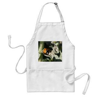 British 7 Spot Ladybug Apron