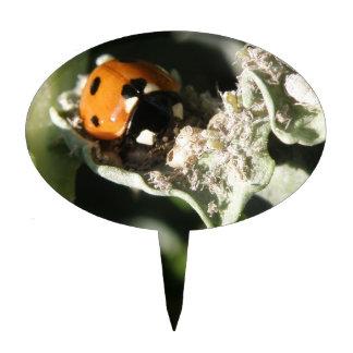 British 7 Spot Ladybug Cake Pick