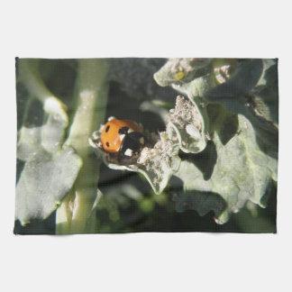 British 7 Spot Ladybug Kitchen Towel