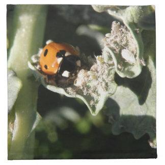 British 7 Spot Ladybug Napkin