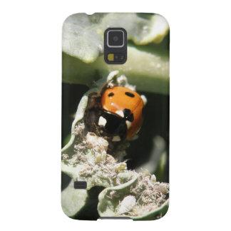 British 7 Spot Ladybug Samsung Galaxy Case