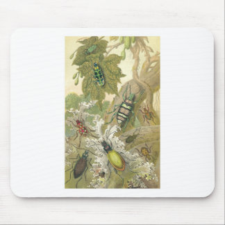 British Beetles Mouse Pad