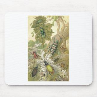 British Beetles Mouse Pad