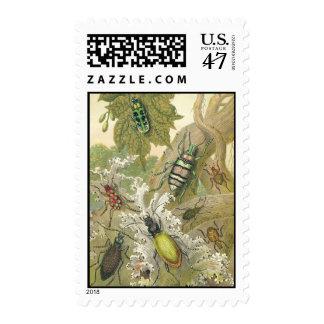 British Beetles Postage Stamps
