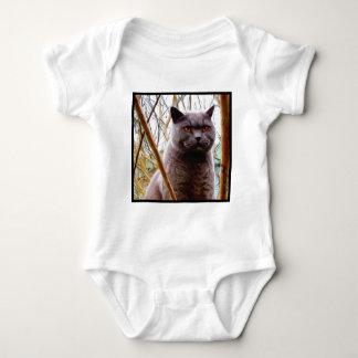 British Blue Cat Baby Shirt