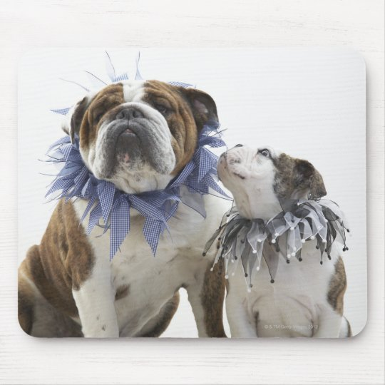 British bulldog and puppy wearing jester collar, mouse pad