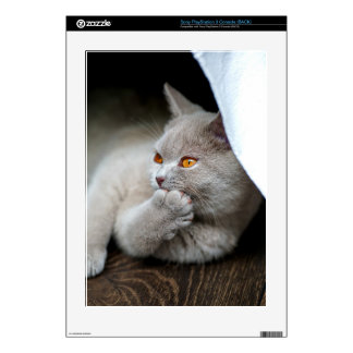 British cat - Funny cat - gray cat Skin For PS3 Console
