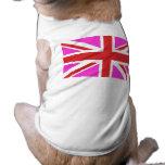 British Gay Pride Dog Clothes