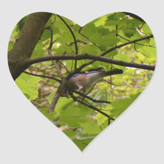 British Jay Heart Sticker