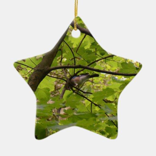British Jay Ornaments