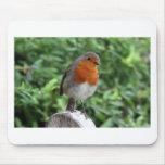 British Robin Mouse Pad
