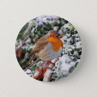 British robin redbreast button