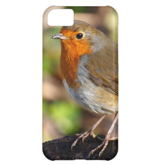 British Robin Redbreast Case For iPhone 5C