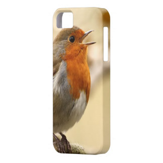 British Robin Redbreast iPhone SE/5/5s Case