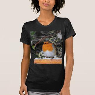 British robin redbreast T-Shirt