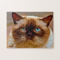 British Short Hair Cat. Jigsaw Puzzle