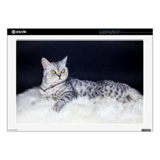 "British short hair silver tabby cat lying on fur 17"" laptop skin"