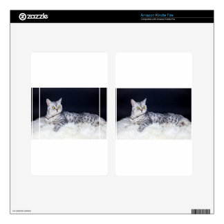 British short hair silver tabby cat lying on fur kindle fire decal