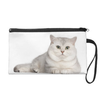 British Shorthair (2 years old) lying in front Wristlet Clutches