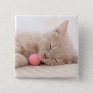 British Shorthair Cat Pinback Button