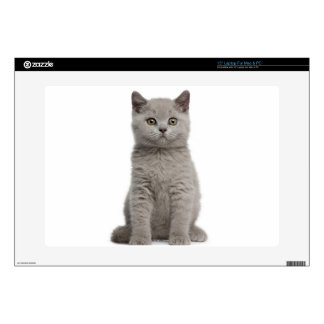 "British Shorthair Kitten (10 weeks old) 2 Decals For 15"" Laptops"