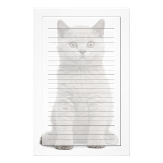 British Shorthair Kitten (10 weeks old) 2 Stationery