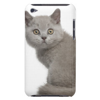 British Shorthair Kitten (10 weeks old) Barely There iPod Covers