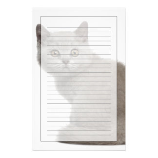 British Shorthair Kitten (10 weeks old) Stationery