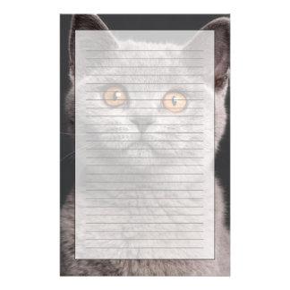 British Shorthair kitten (3 months old) Stationery