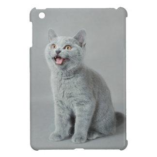 British shorthair kitten iPad mini case