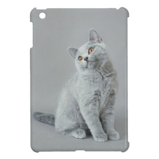British shorthair kitten iPad mini cover