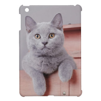 British shorthair kitten iPad mini covers