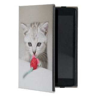 British shorthair kitten smelling toy mouse case for iPad mini