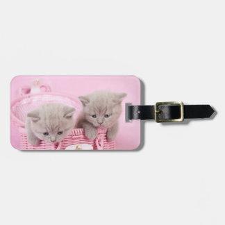 British shorthair kittens bag tag