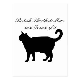 British Shorthair Mum Postcard