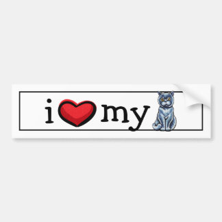 British Shorthair Sit Pretty Bumper Sticker