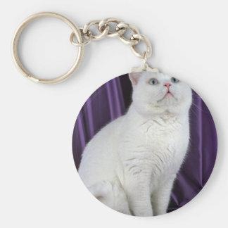 British Shorthair, white Keychain