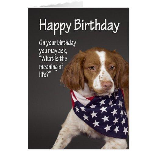 Brittany Birthday Card