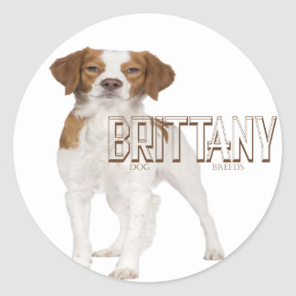 Brittany dog breeds  ブルターニュ犬の品種 classic round sticker