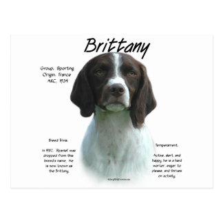 Brittany (liver) History Design Postcards