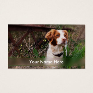 Brittany or Pet Industry Business Card
