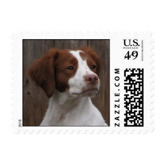 Brittany Postage Stamp