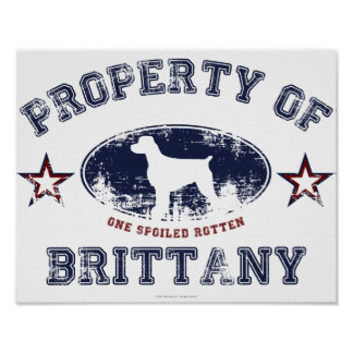 Brittany Poster