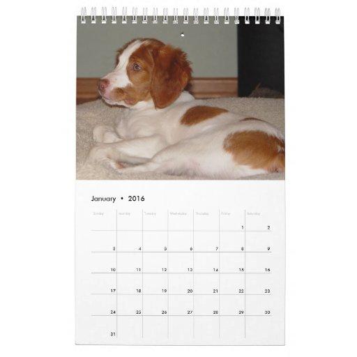 Brittany Puppies 2008 Calendar