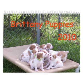 Brittany Puppies 2010 Calendar