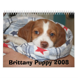 Brittany Puppy Calendar 2008 (ALL RUSTY)