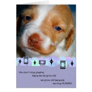 Brittany Spaniel Birthday Greeting Card