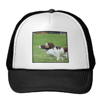 Brittany Spaniel cap Hats